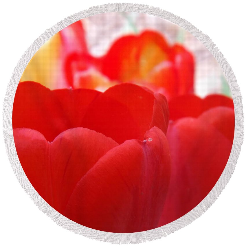 Tulip Round Beach Towel featuring the photograph Red Tulip by Lorna Hooper
