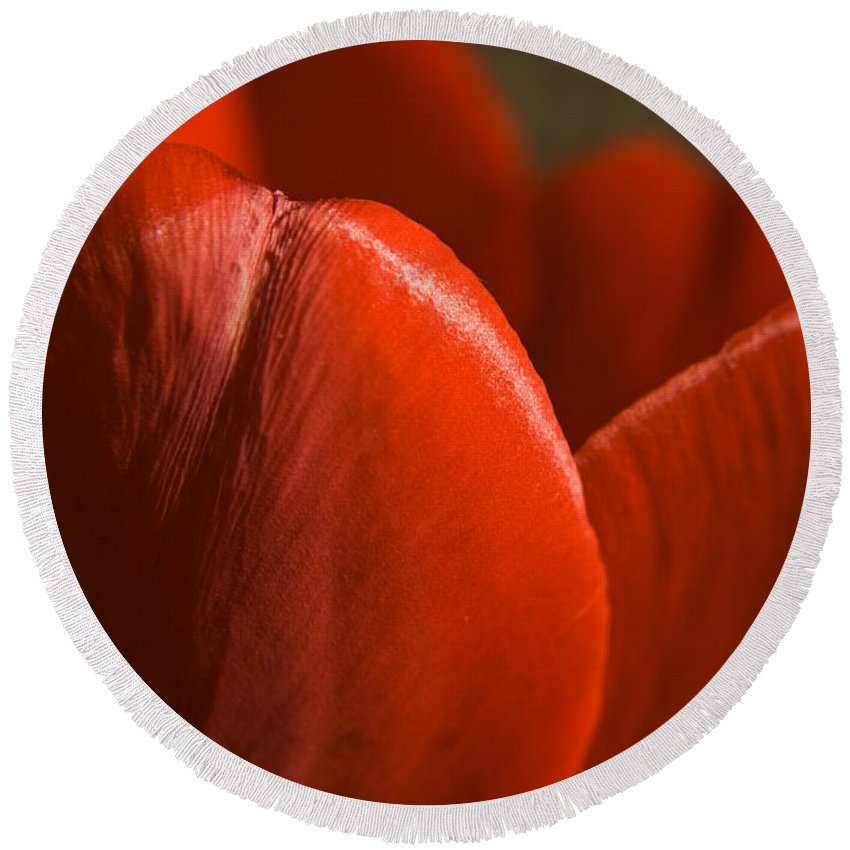Tulip Round Beach Towel featuring the photograph Red Tulip Up Close by Teresa Mucha