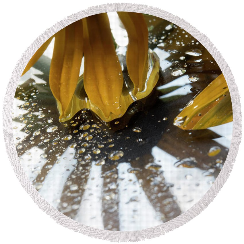 Ohio Flower Round Beach Towel featuring the photograph Reflected Yellow Petals by Michelle Himes