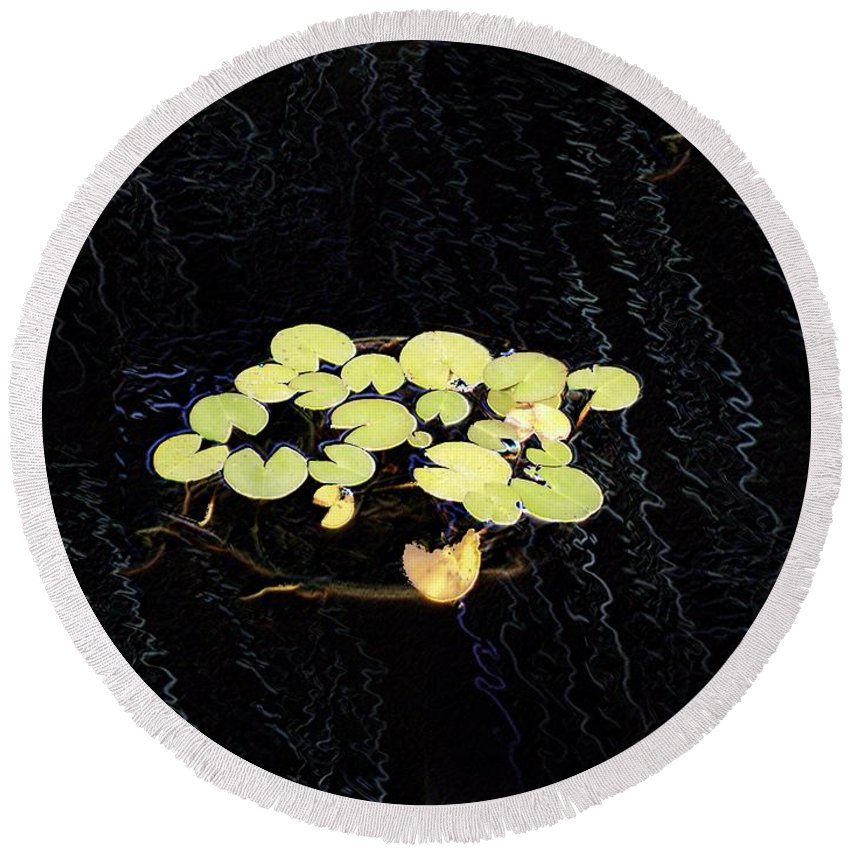 Lillies Round Beach Towel featuring the digital art Reflecting Pool Lilies by Tim Allen