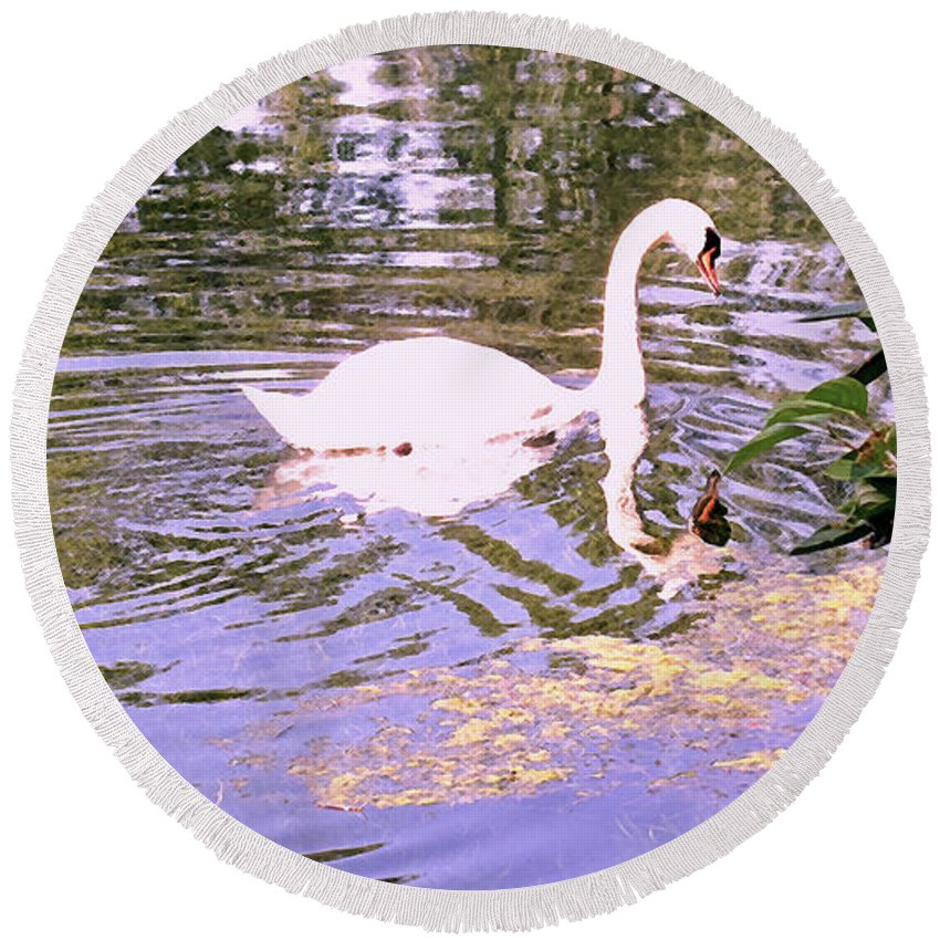Swan Round Beach Towel featuring the photograph Reflection by Ian MacDonald