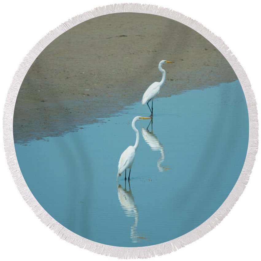 Southern Illinois Round Beach Towel featuring the photograph Reflection On Herons by John Diebolt