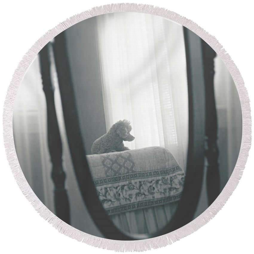Animals Round Beach Towel featuring the photograph Reflection by Sue Collura