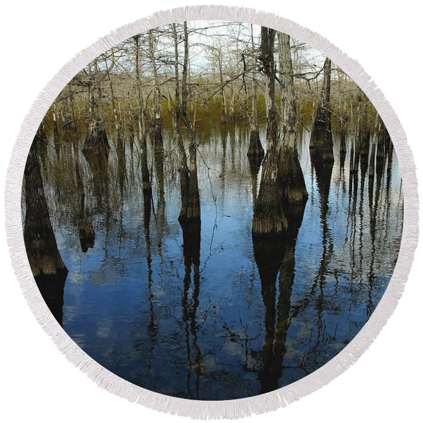 Bald Cypress Trees Round Beach Towel featuring the photograph Reflections At Big Cypress by David Lee Thompson