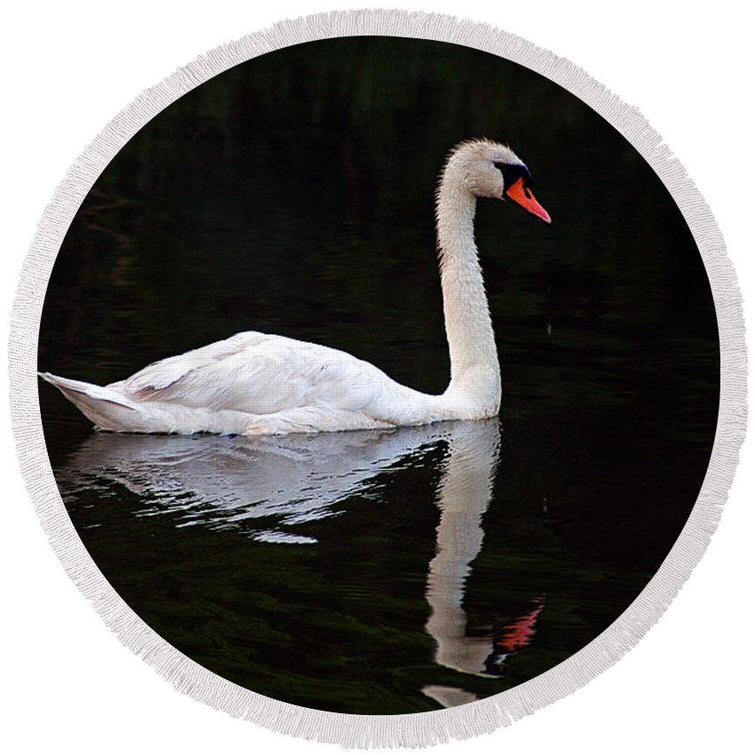 Clay Round Beach Towel featuring the photograph Reflections Of A Swimming Swan by Clayton Bruster