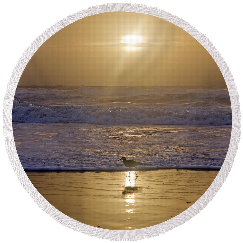 Romance Round Beach Towel featuring the photograph Reflective Spotlight by Betsy Knapp