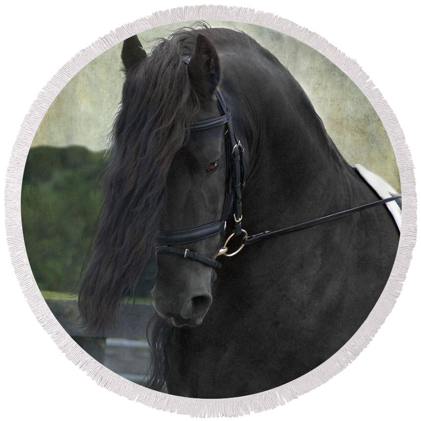 Horses Round Beach Towel featuring the photograph Remme by Fran J Scott