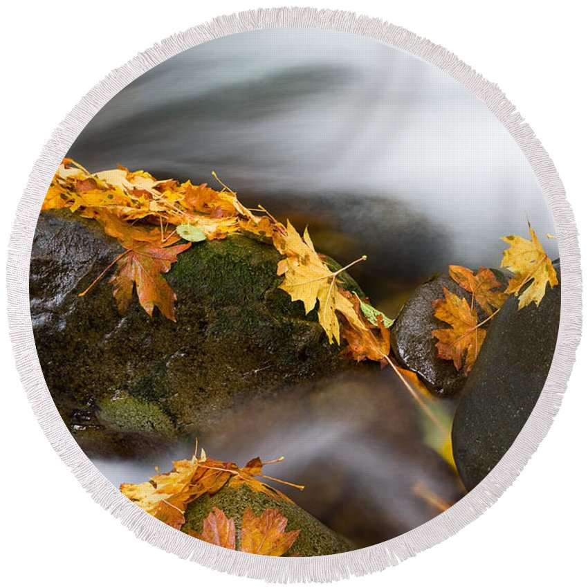 Autumn Round Beach Towel featuring the photograph Respite by Mike Dawson