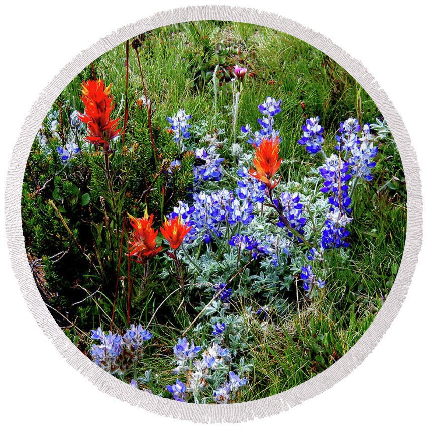 Flower Paintbrush Lupine Yosemite Round Beach Towel featuring the photograph Re,white, And Blue by Daniel Saviers