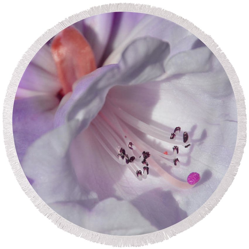 Flower Round Beach Towel featuring the photograph Rhododendron In White And Magenta by Lena Photo Art