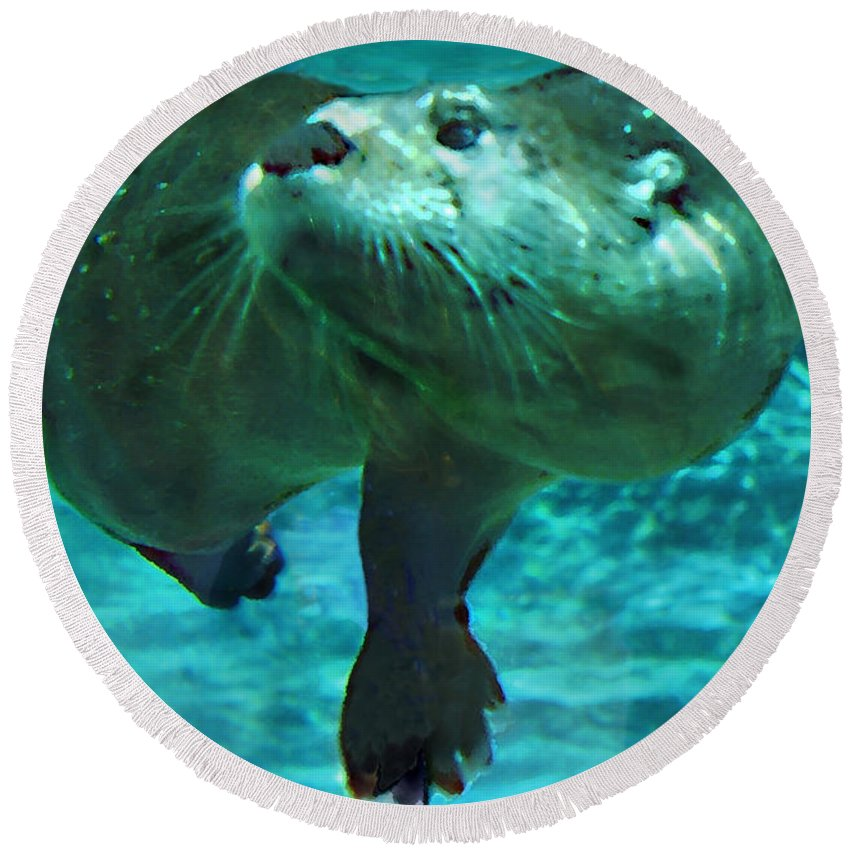 Animal Round Beach Towel featuring the photograph River Otter by Steve Karol