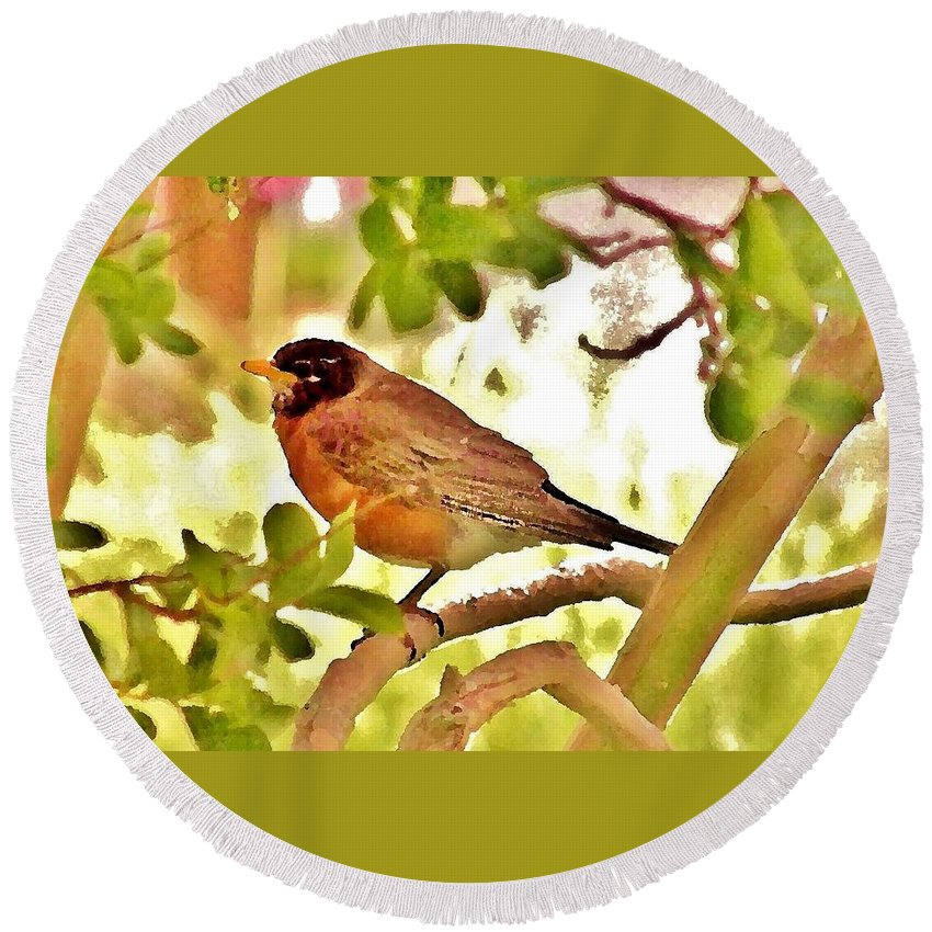 Round Beach Towel featuring the photograph Robin In Tree by Kim Bemis