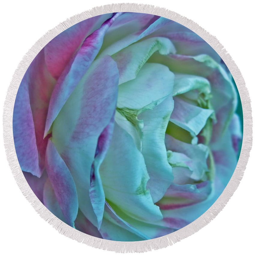 Photograph Of White And Pink Rose Round Beach Towel featuring the photograph Romancing The Restless by Gwyn Newcombe