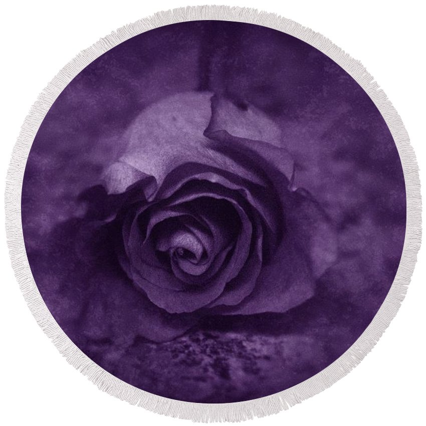 Purple Round Beach Towel featuring the photograph Rose - Purple by Angie Tirado
