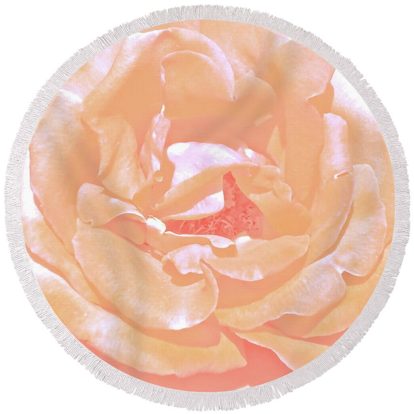 Flower Round Beach Towel featuring the photograph Rose 41 by Pamela Cooper
