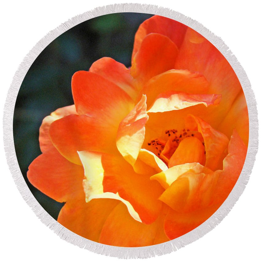 Rose Round Beach Towel featuring the photograph Rose Flower Garden Orange Roses art prints Baslee by Patti Baslee