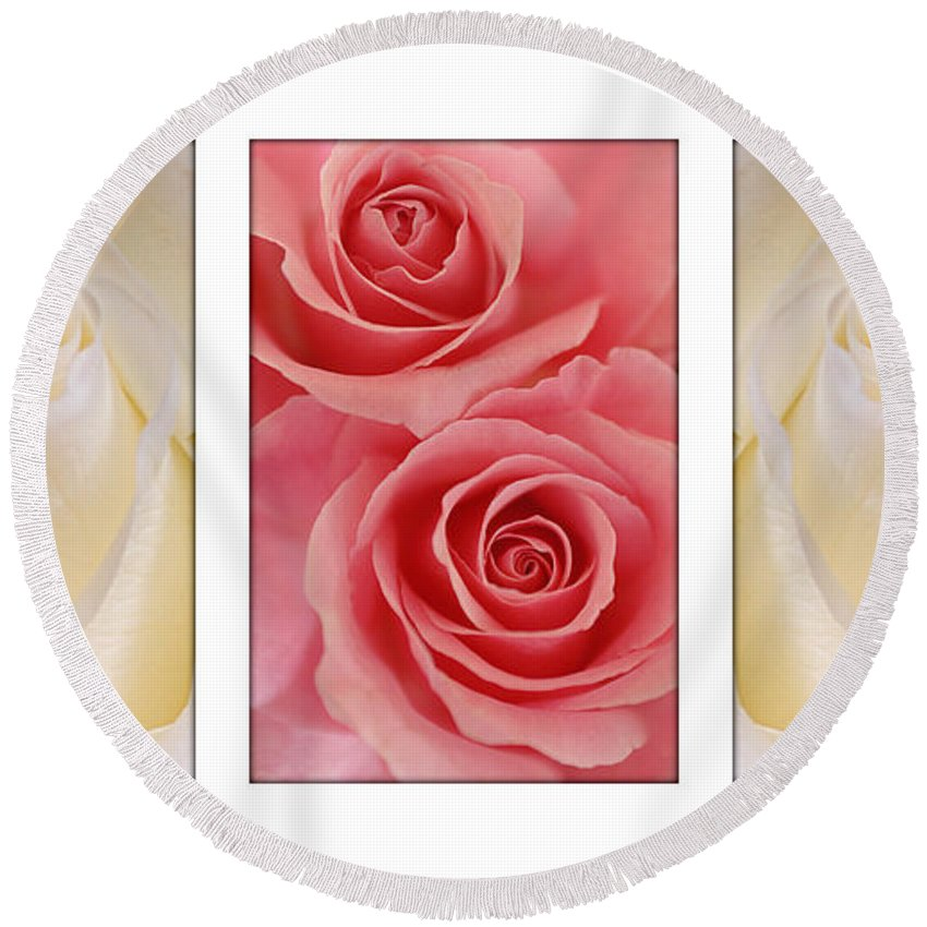 Rose Round Beach Towel featuring the photograph Rose Series by Jill Reger