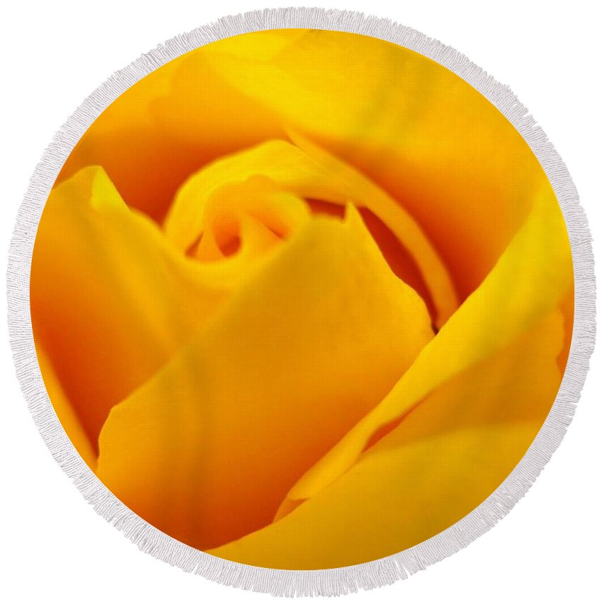 Rose Round Beach Towel featuring the photograph Rose Yellow by Rhonda Barrett