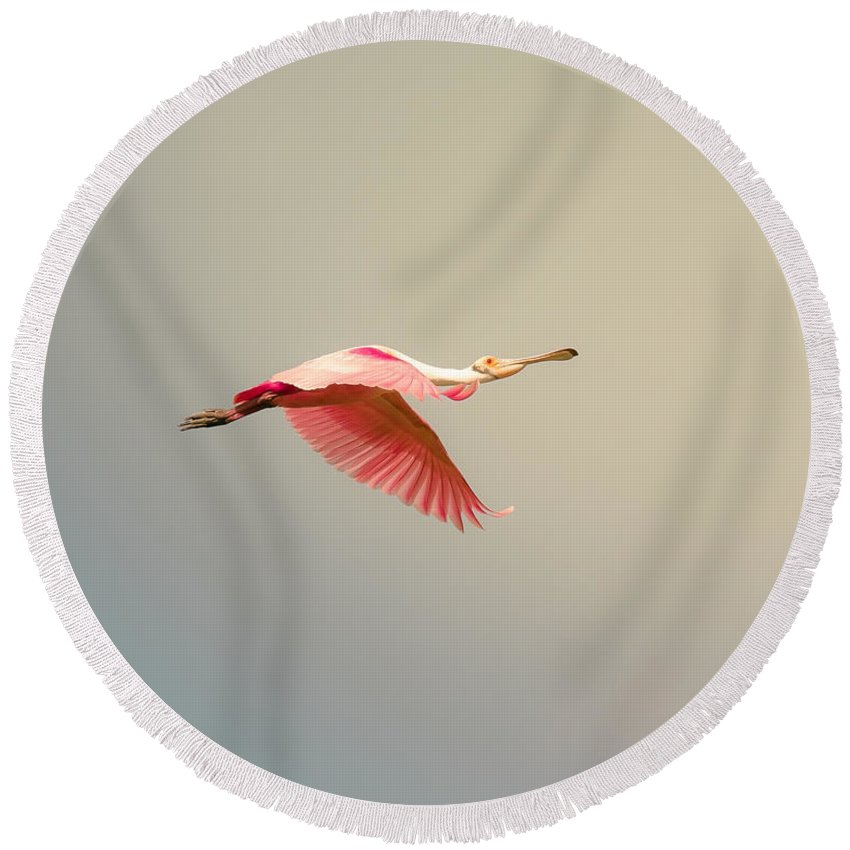Animal Round Beach Towel featuring the photograph Roseate Spoonbill Flying by Robert Frederick