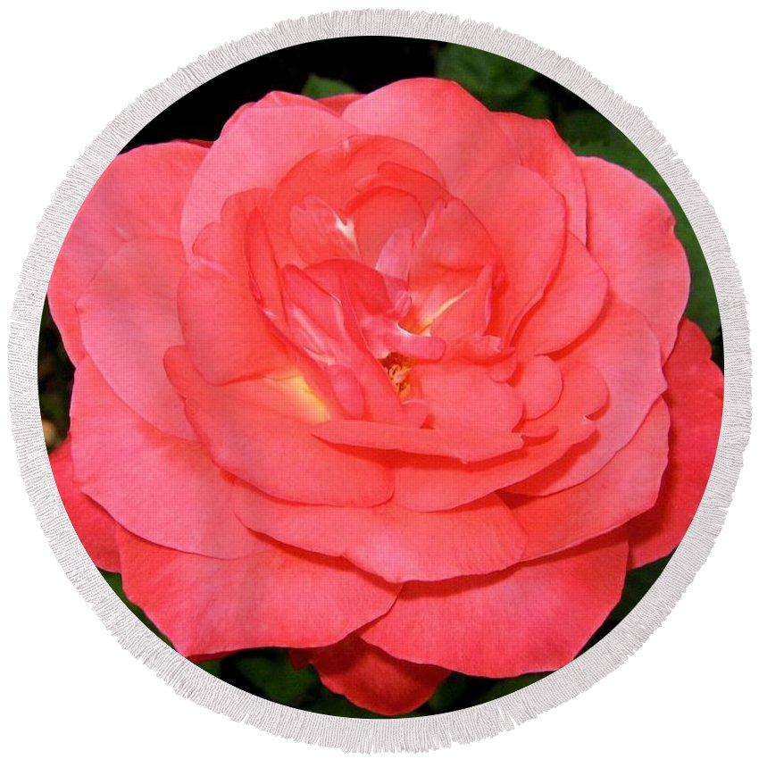 Rose Round Beach Towel featuring the photograph Roses 3 by Will Borden