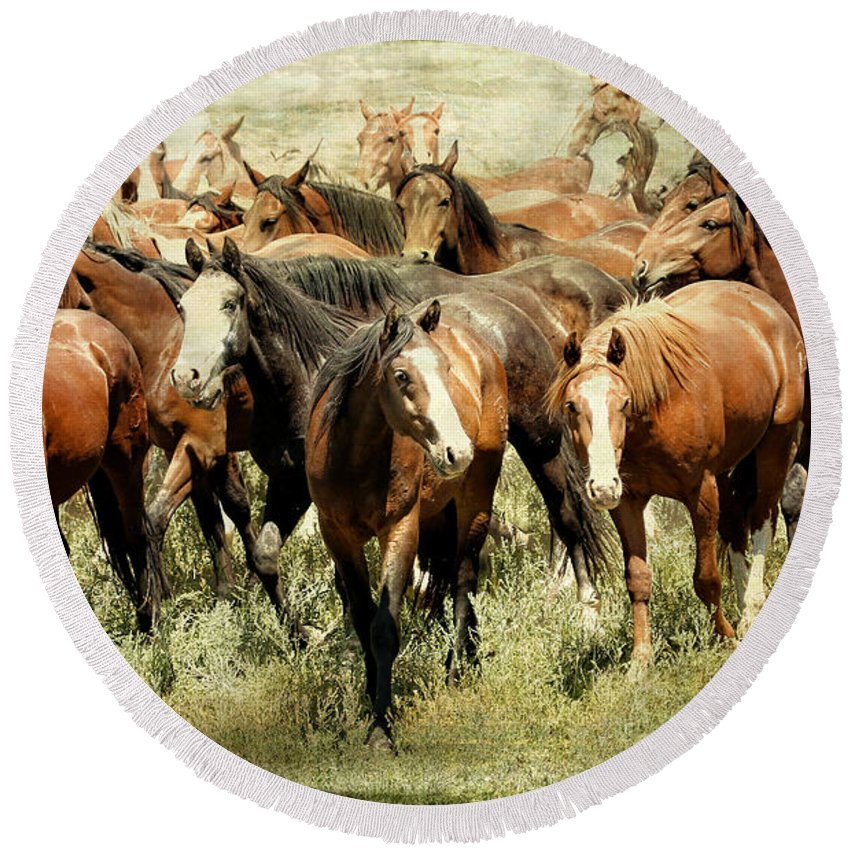 Horses Round Beach Towel featuring the photograph Running Free Horses IIi by Athena Mckinzie