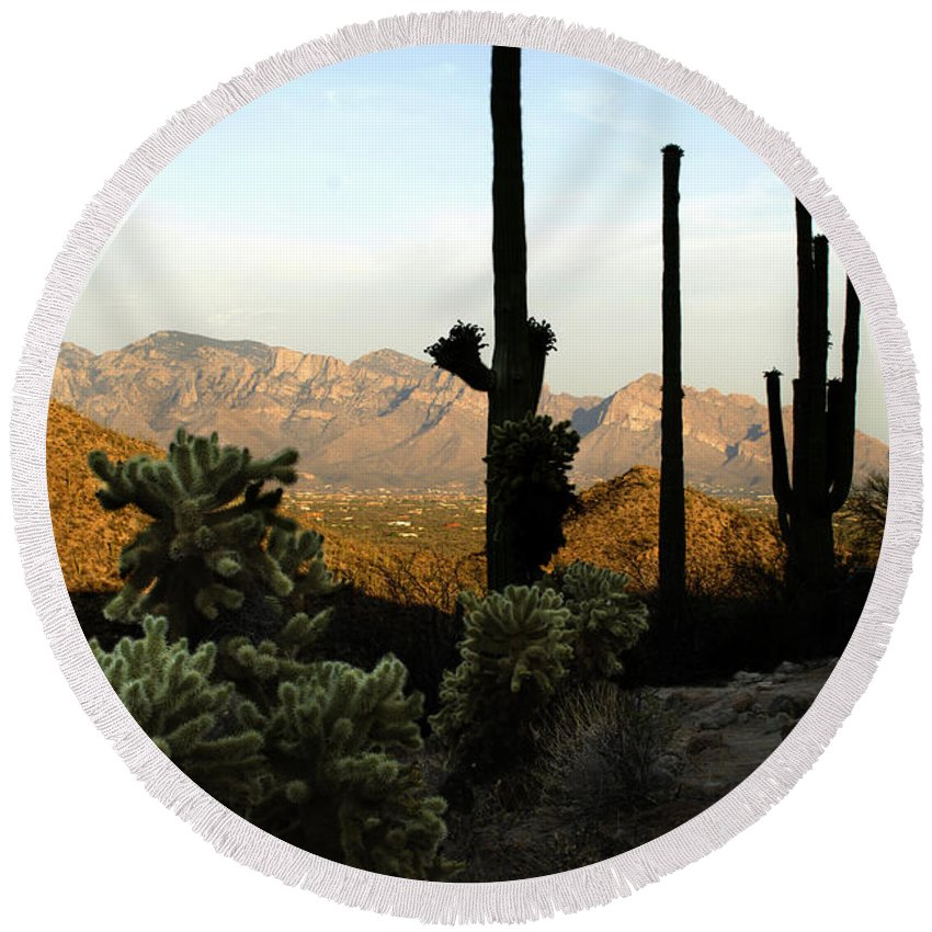 Saguaro Round Beach Towel featuring the photograph Saguaro Silhouette by Jill Reger