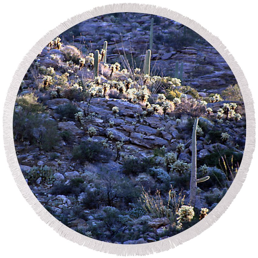 Cactus Round Beach Towel featuring the photograph Saguaro Sunrise by Joe Kozlowski
