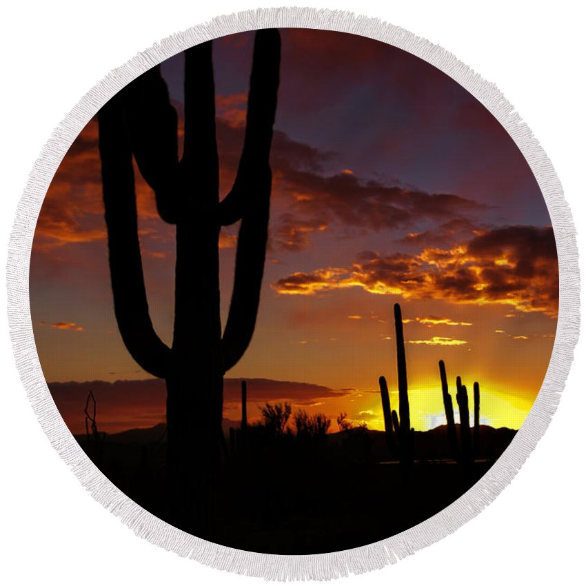 Saguaro National Park Round Beach Towel featuring the photograph Saguaro Sunset Silhouette #2 by Susan Rissi Tregoning