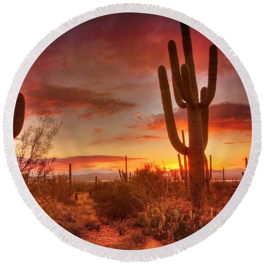 Saguaro National Park Round Beach Towel featuring the photograph Saguaro Sunset by Susan Rissi Tregoning