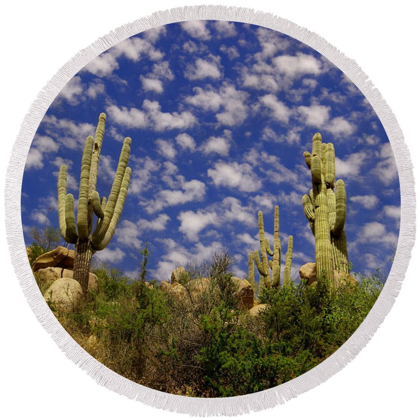 Cactus Round Beach Towel featuring the photograph Saguaros Under A Cloud Dappled Sky by Jeff Swan