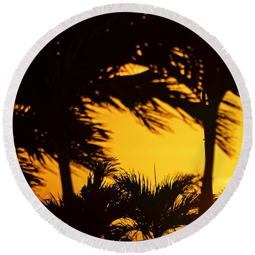 Sunset Round Beach Towel featuring the photograph Saint Martin Sunset Through The Palm Trees by Toby McGuire