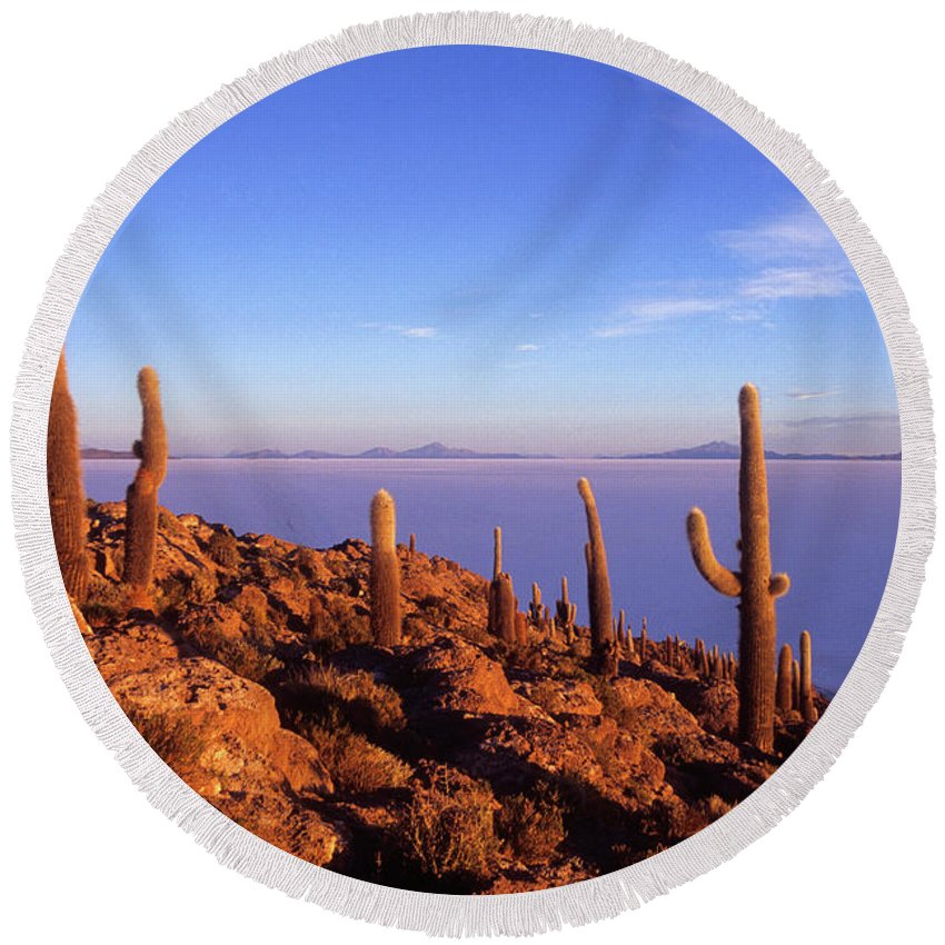Bolivia Round Beach Towel featuring the photograph Salar De Uyuni And Cacti At Sunrise by James Brunker
