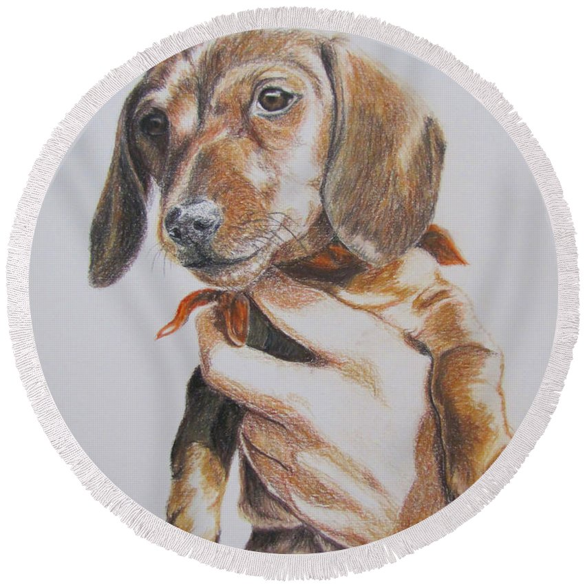 Puppy Round Beach Towel featuring the drawing Sambo by Karen Ilari