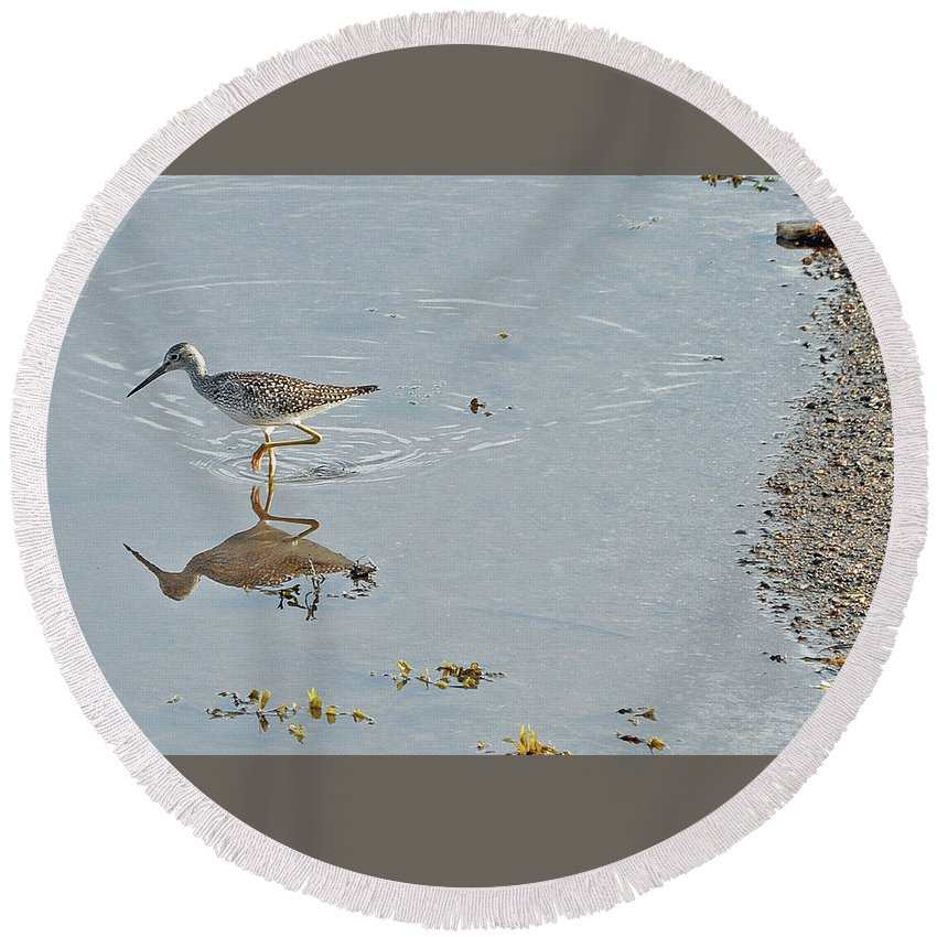 Water Fowl Round Beach Towel featuring the photograph Sandpiper's Mirror by Colleen English