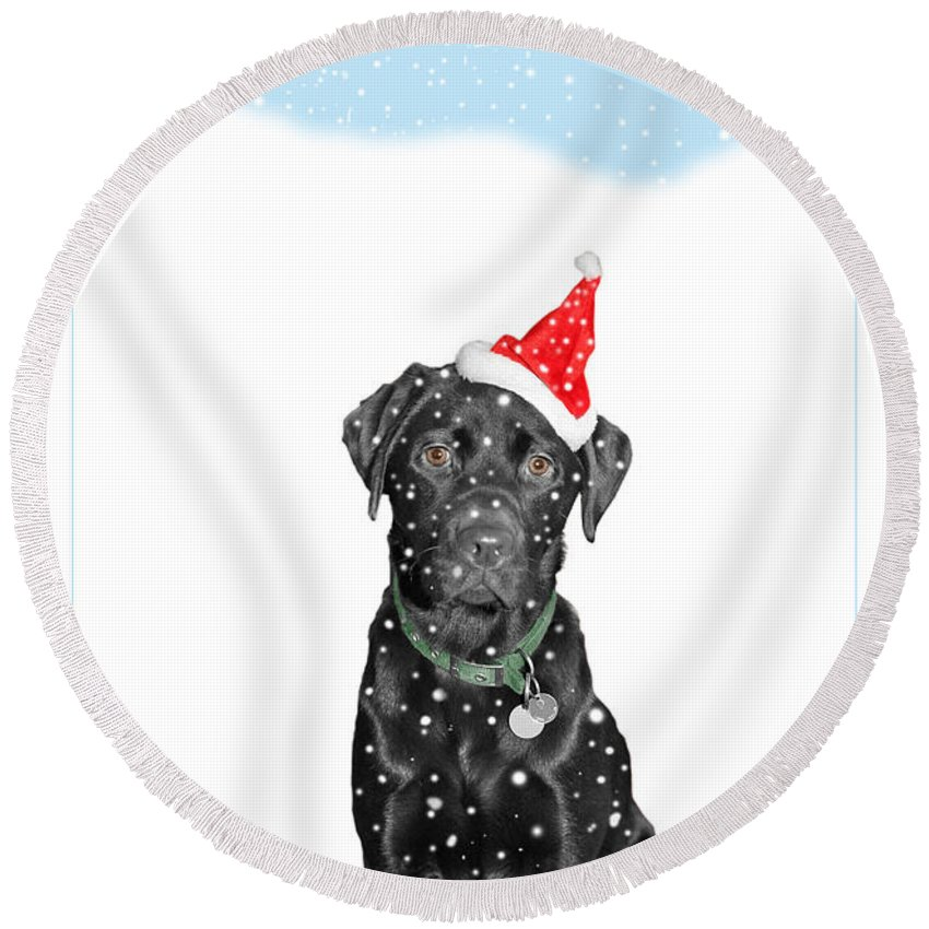 Christmas Round Beach Towel featuring the photograph Santa Dog In The Snow by Mal Bray