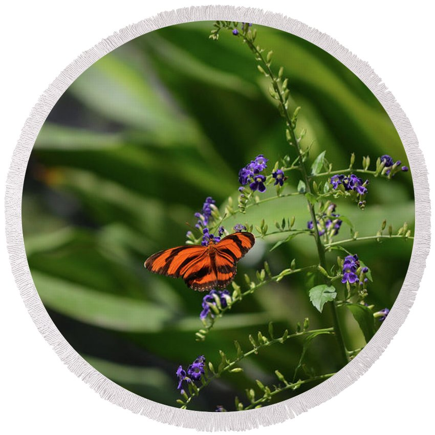 Butterfly Round Beach Towel featuring the photograph Scenic View Of An Orange Oak Tiger Butterfly by DejaVu Designs