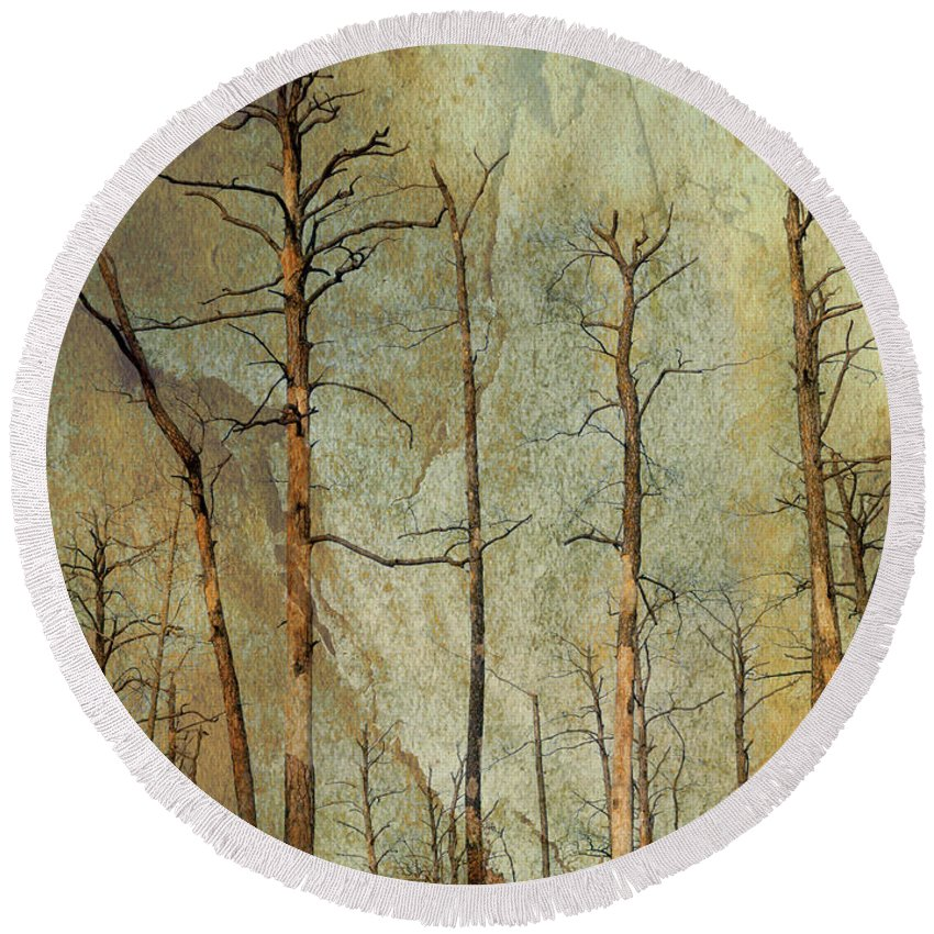 Round Beach Towel featuring the photograph Scorched Forest by Darla Rae Norwood