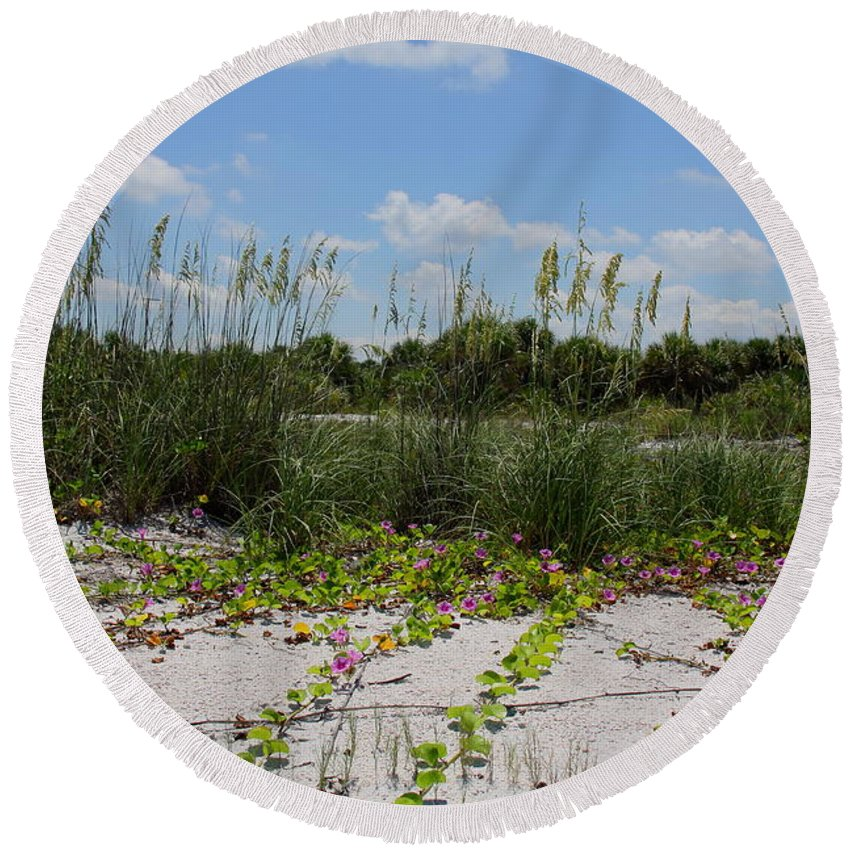 Beach Round Beach Towel featuring the photograph Sea Oats And Blooming Cross Vine by Barbara Bowen