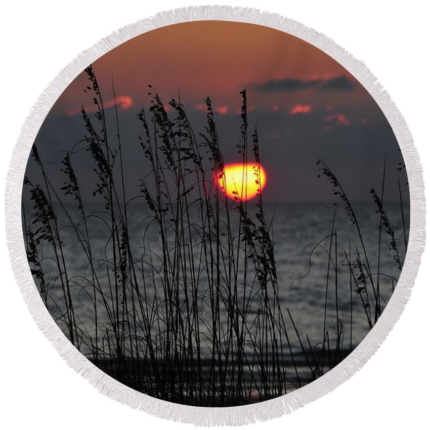 Sea Oats Round Beach Towel featuring the photograph Sea Oats by David Lee Thompson