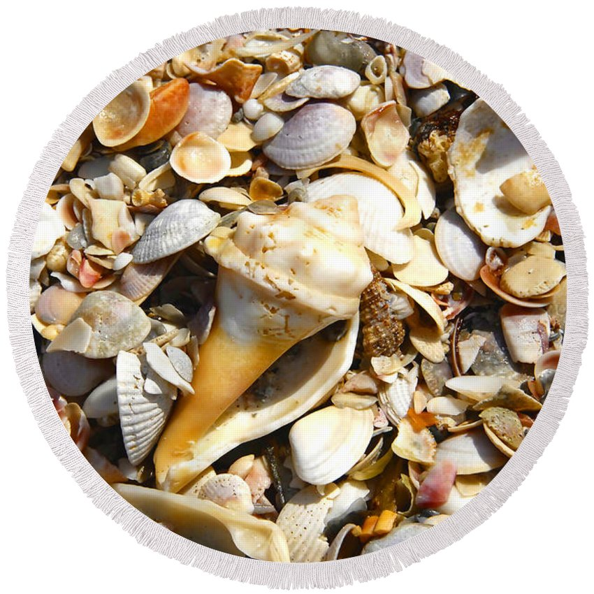Florida Round Beach Towel featuring the photograph Sea Shells by David Lee Thompson
