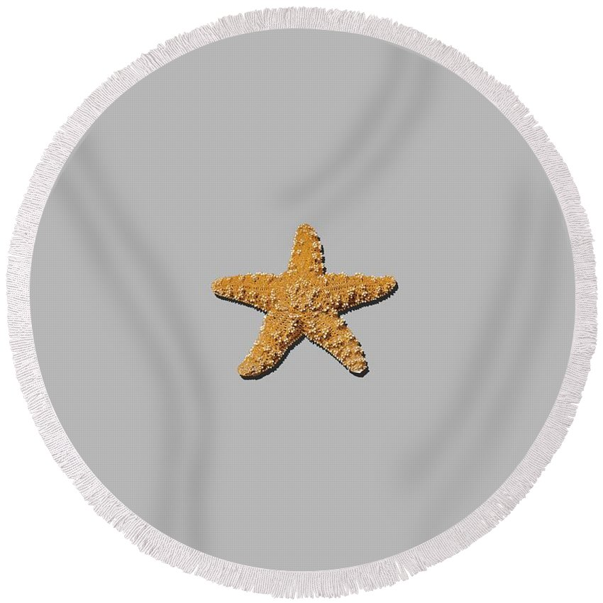 Sea Star Round Beach Towel featuring the photograph Sea Star Orange .png by Al Powell Photography USA