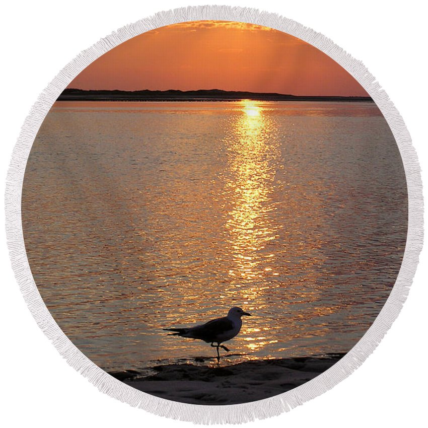Seagull Round Beach Towel featuring the photograph Seagull At Sunset by Charles Harden
