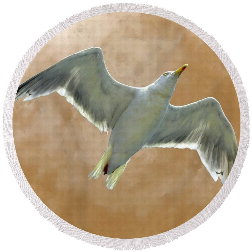Seagull Round Beach Towel featuring the photograph Seagull In Flight 1 by Mark Sellers