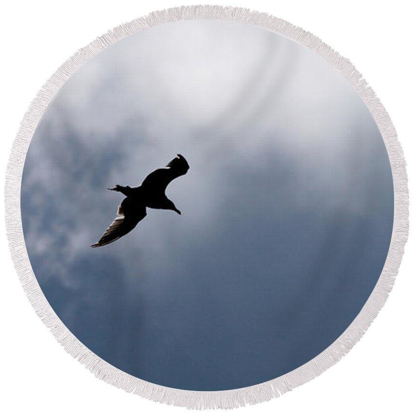 Lehtokukka Round Beach Towel featuring the photograph Seagull's Sky 1 by Jouko Lehto