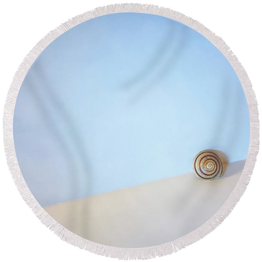 Nautilus Shell Photographs Round Beach Towels