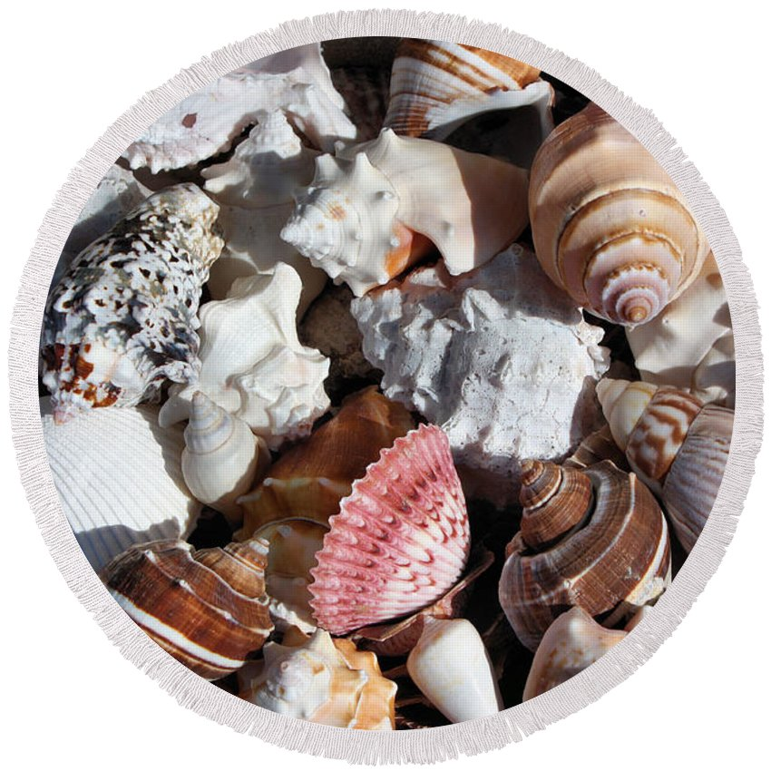 Seashells Round Beach Towel featuring the photograph Seashells by Kristin Elmquist