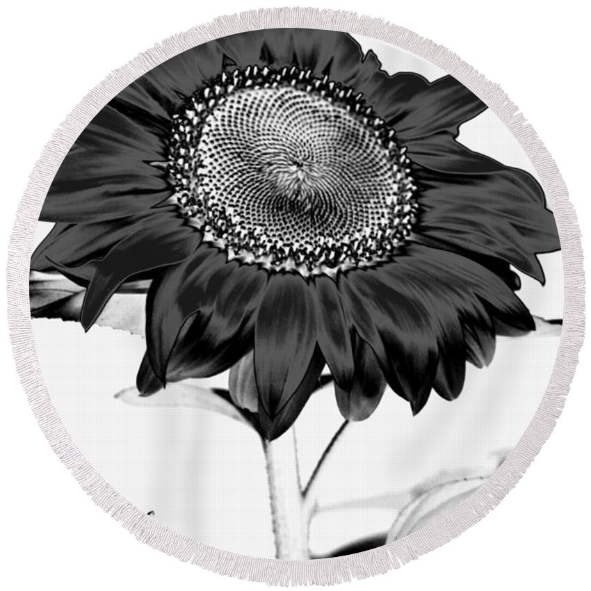 Black And White Photography Round Beach Towel featuring the photograph Seattle Sunflower Bw Invert - Stronger by Heather Kirk