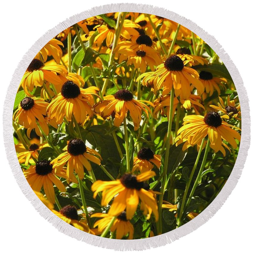 Sunflower Round Beach Towel featuring the photograph See Us Together by Diane Greco-Lesser