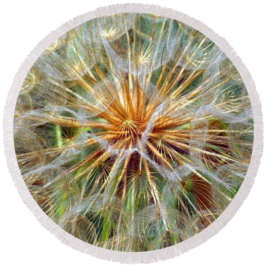 Wildflower Round Beach Towel featuring the photograph Seeds by Marty Koch