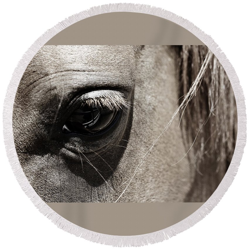 Americana Round Beach Towel featuring the photograph Stillness In The Eye Of A Horse by Marilyn Hunt